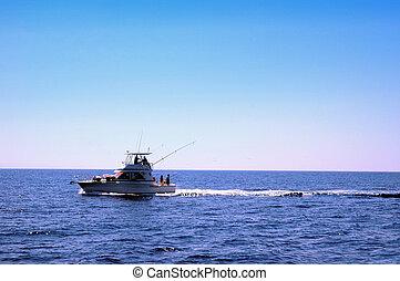 sport, fish, csónakázik