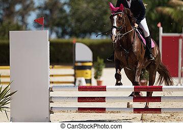 Sport horse jumping over a barrier