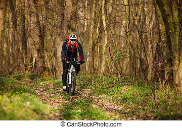 Sport. Mountain Bike cyclist riding single track in beautifull spring forest