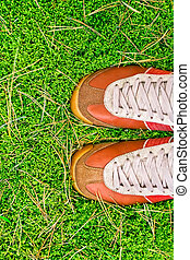 sport shoes on a green grass. concept