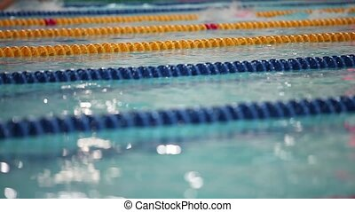 Sport swimming low angle view