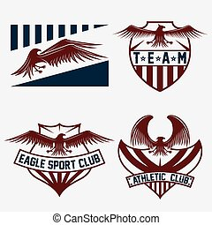 sport team crests set with eagles vector design template