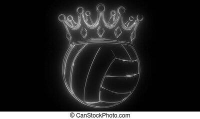 sport Volleyball Ball digital video