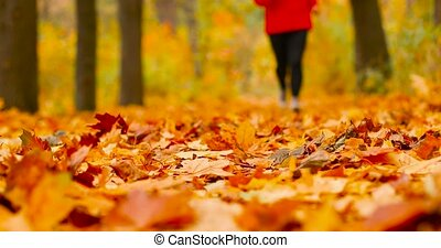 Sport woman jogging outdoors in autumn forest. Morning running. Health and sport concept