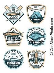 sportende, set, visserij, iconen