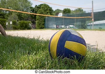 sportende, volleybal, op, gras