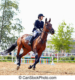 sportive, horse., rouges