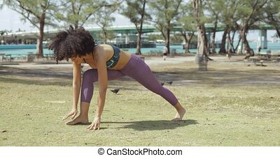 Sportive woman training yoga in park - Fit black woman in...