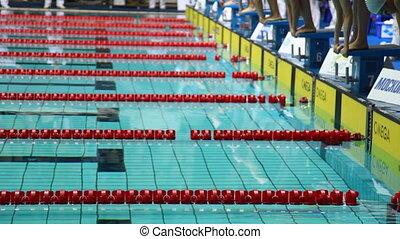 sportlerinnen, start, schwimmen, auf, rgeöffnete,...