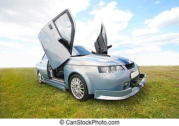 Sports car in the field
