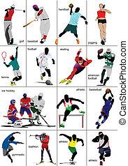 sports., collection., enig, soorten