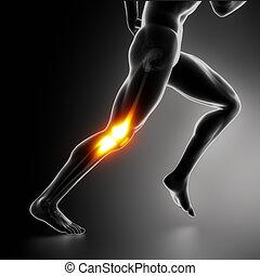 sports, knä, smärta, begrepp