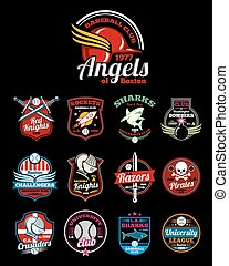 Sports teams high school, university and college vector color  badges