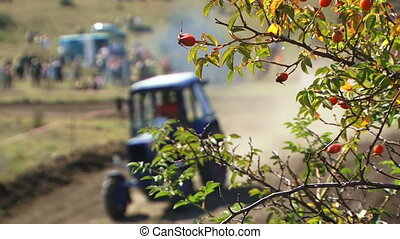 Sports tractor - Sports race on tractors.