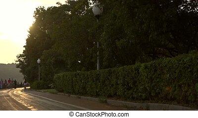 Sportsman in blue uniform runs from the camera along summer ...