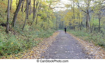 sportsman run autumn road