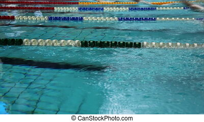 Sportsmen swim backstroke on tracks swimming pool