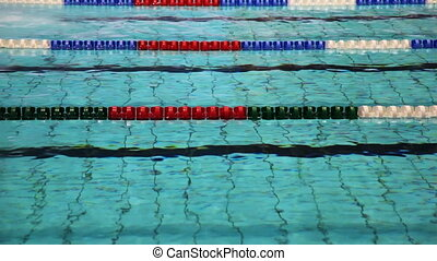 Sportsmen swim butterfly on tracks swimming pool