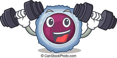 Sporty Fitness exercise lymphocyte cell using barbells. ...