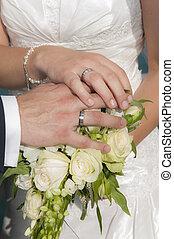 sposa, esposizione, sposo, anelli, mani