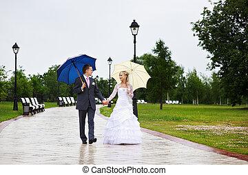 sposa sposo, a, matrimonio, uno, camminata dentro, parco