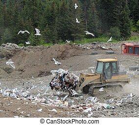 spostamento, rifiuti, a, il, discarica