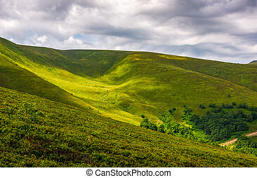 spot of light on green hillside on overcast day. beautiful...