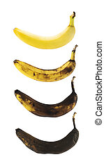 Fresh yellow spotless banana in a process of decompose rottening isolated over white background, set of four images