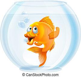 spotprent, goudvis, in, kom