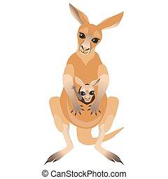 spotprent, kangoeroe en joey