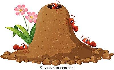 spotprent, mieren, kolonie, en, mier, heuvel