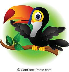 spotprent, toucan, het voorstellen, vogel