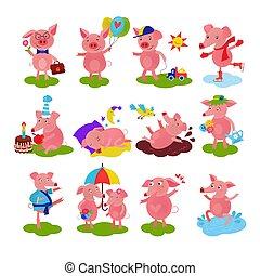 spotprent, varken, vector, big, of, piggy, karakter, op, jarig, en, roze, piggy-wiggy, spelend, in, plas, illustratie, piggish, set, van, piggery, paar, en, pigling, baby, vrijstaand, op wit, achtergrond