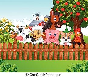 spotprent, verzameling, boerderijdieren