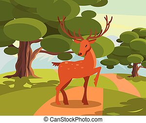 Spotted deer with branched horns, wild animal amongst a...