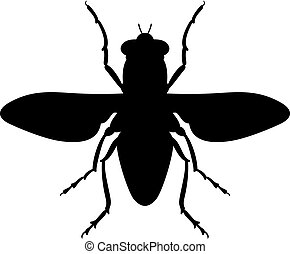 Spotted flesh fly icon - Spotted flesh fly (screwworm fly)...