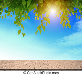 spotten, of, vloer, montage, zon, bladeren, werken, hemel, plank, blule, hout, groene, display, achtergrond, licht, jouw, lege