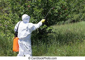 Spraying a fruit orchard - Pesticide spraying