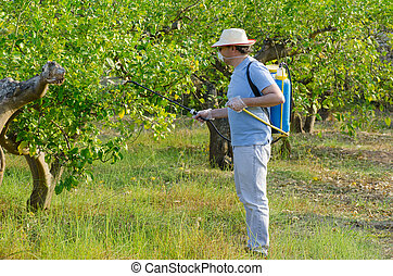 Agricultural worker spraying a lemon field with pesticide