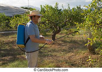 Spraying pesticide - Agricultural worker spraying pesticide...