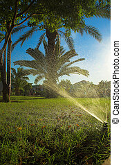 Spraying machine waters grass in hot Africa
