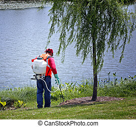 Spreading chemicals on lawn