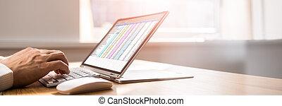 Spreadsheet Business Data Analyst
