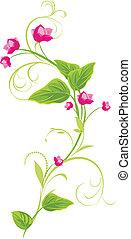 sprig, met, rose bloemen