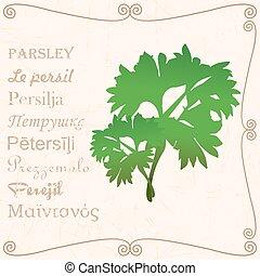 Sprig of parsley in vintage style