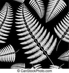 Sprig of white fern on a black background.