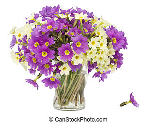 Sprigs Primroses flowers bouquet in small glass isolated