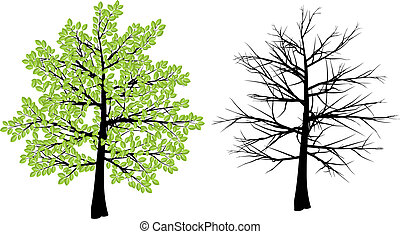 winter tree clipart and stock illustrations 164 082 winter tree rh canstockphoto com winter tree clip art free winter tree scene clipart