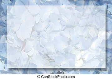 A frame/background of blue hydrangea petals with room for copy