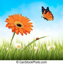 Spring background. Orange beautiful flower and a butterfly. Vector.
